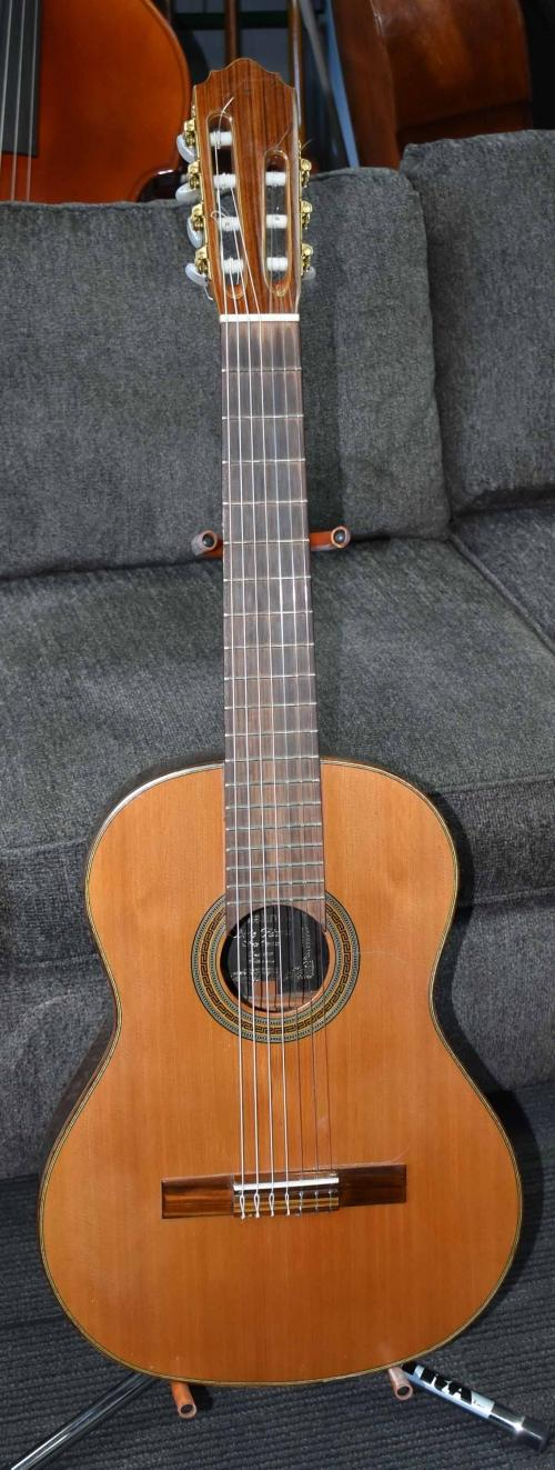 Giannini 7 string Classical Electric Guitar